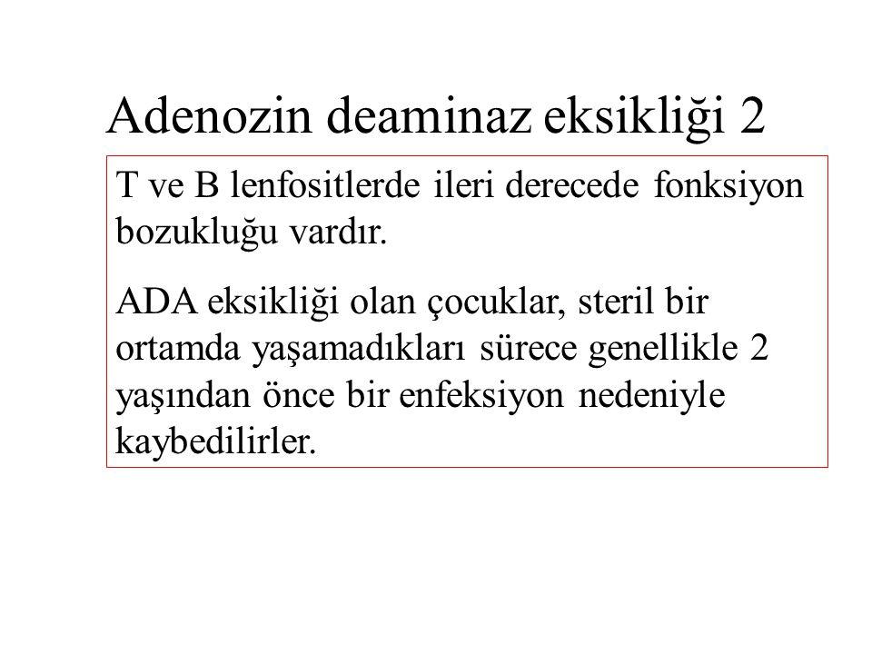 Adenozin deaminaz eksikliği 2