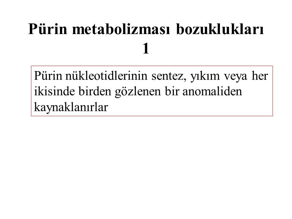 Pürin metabolizması bozuklukları 1