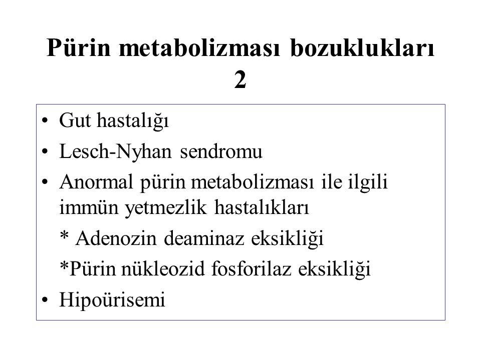 Pürin metabolizması bozuklukları 2