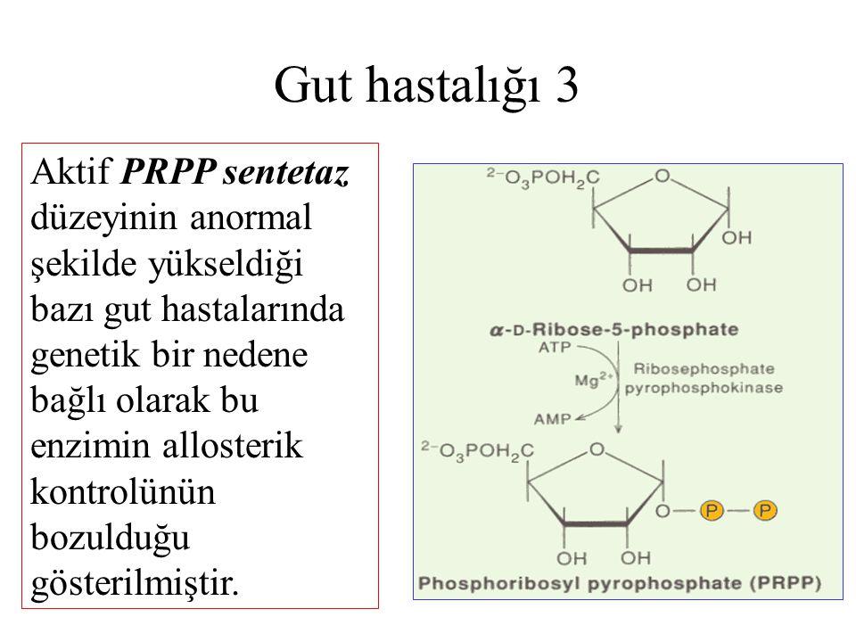 Gut hastalığı 3