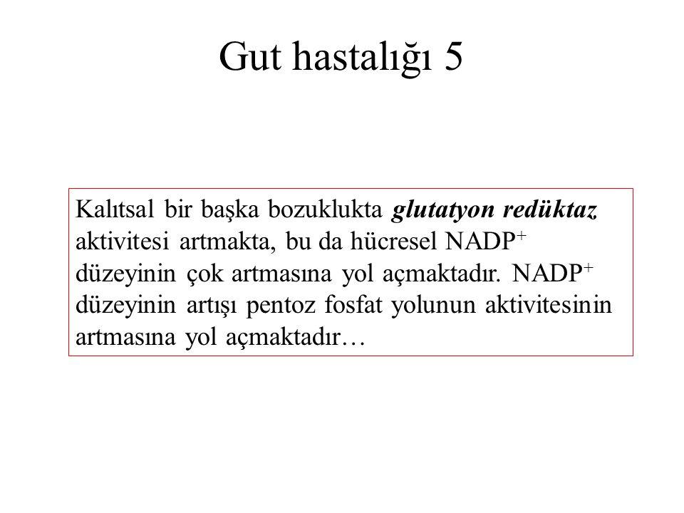 Gut hastalığı 5