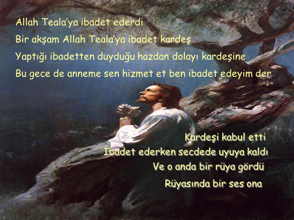 Allah Teala'ya ibadet ederdi