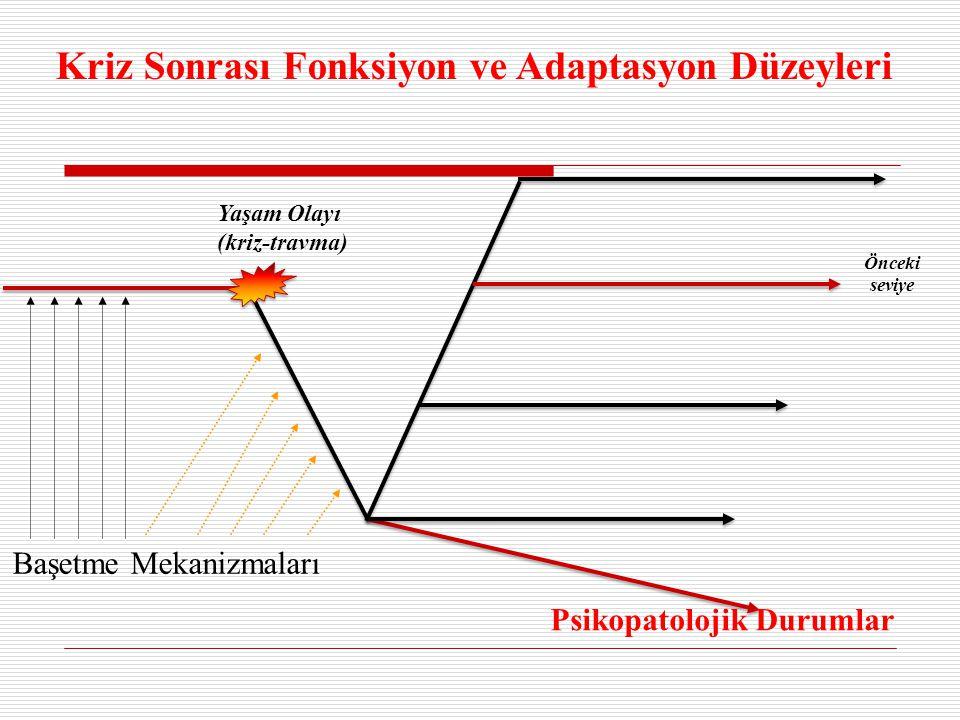 Kriz Sonrası Fonksiyon ve Adaptasyon Düzeyleri