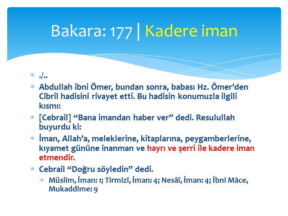 Bakara: 177 | Kadere iman ./..