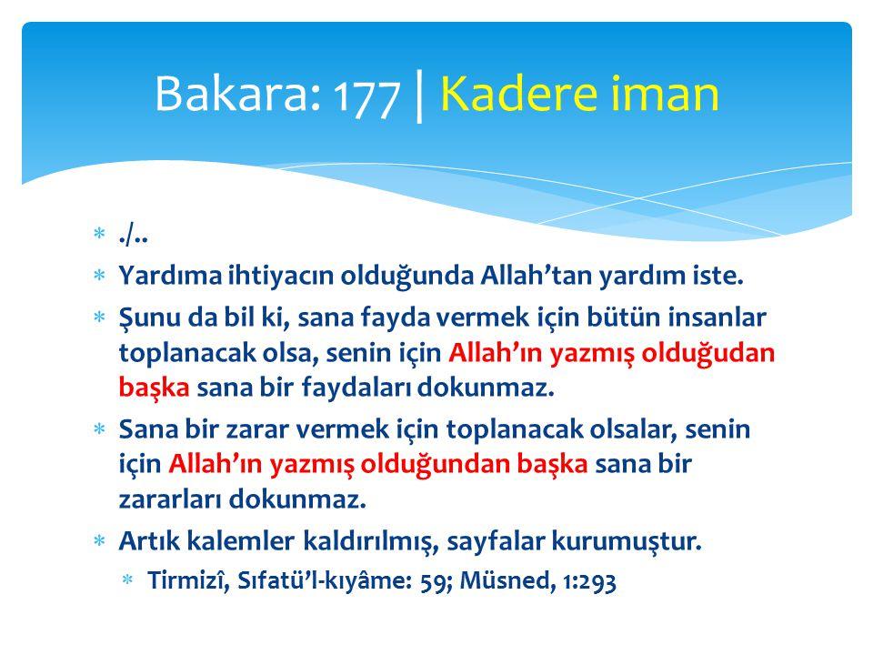 Bakara: 177 | Kadere iman ./.. Yardıma ihtiyacın olduğunda Allah'tan yardım iste.