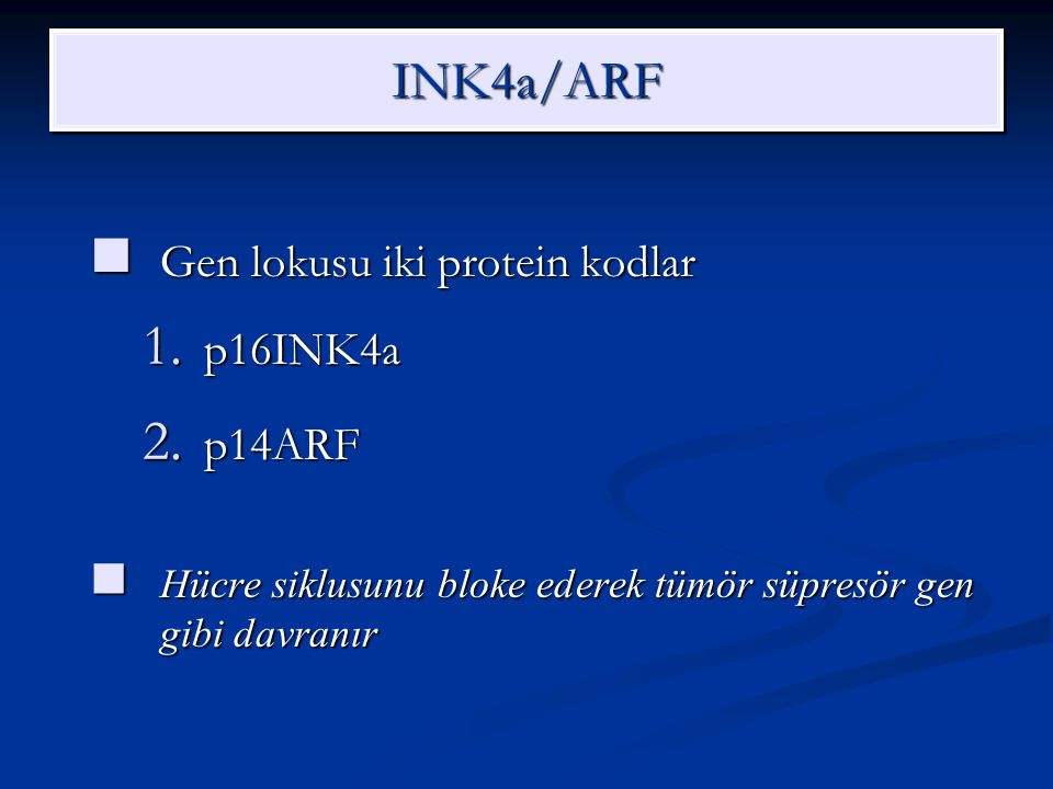 INK4a/ARF Gen lokusu iki protein kodlar p16INK4a p14ARF