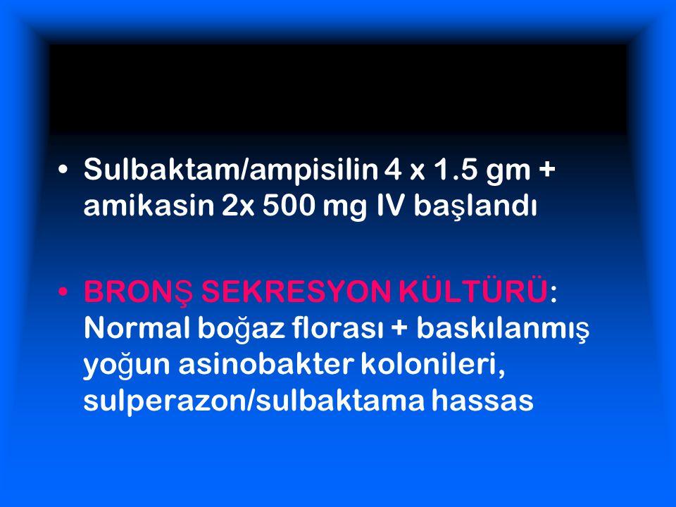 Sulbaktam/ampisilin 4 x 1.5 gm + amikasin 2x 500 mg IV başlandı