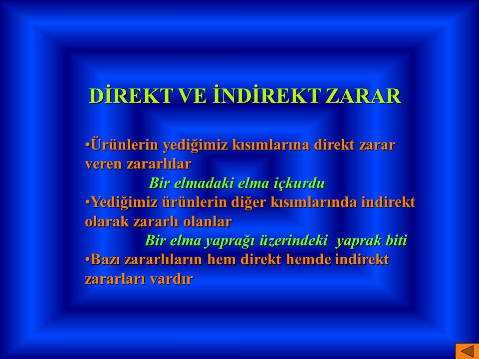DİREKT VE İNDİREKT ZARAR