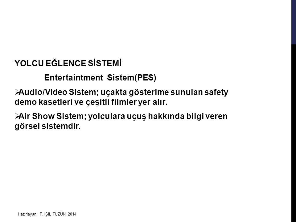 Entertaintment Sistem(PES)