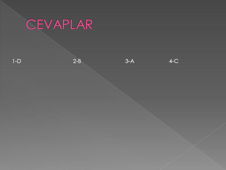 CEVAPLAR 1-D 2-B 3-A 4-C.