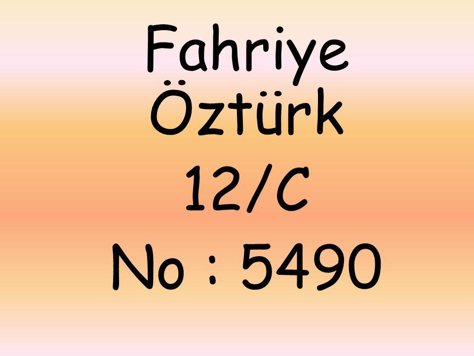 Fahriye Öztürk 12/C No : 5490