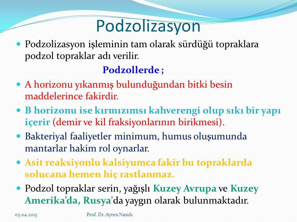 Podzolizasyon Podzolizasyon işleminin tam olarak sürdüğü topraklara podzol topraklar adı verilir. Podzollerde ;