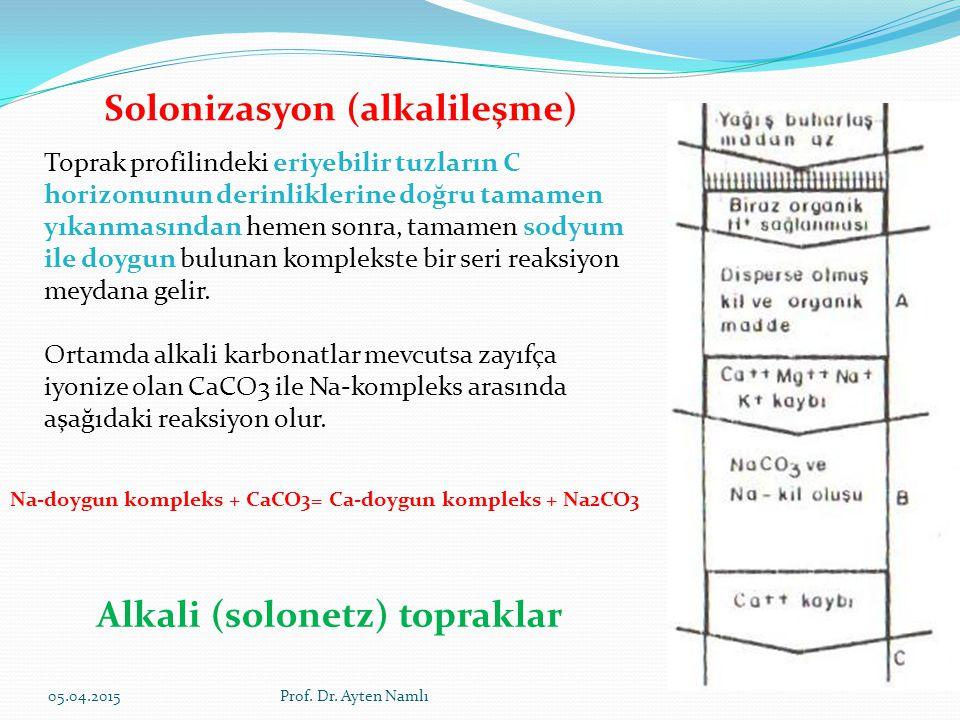 Solonizasyon (alkalileşme)
