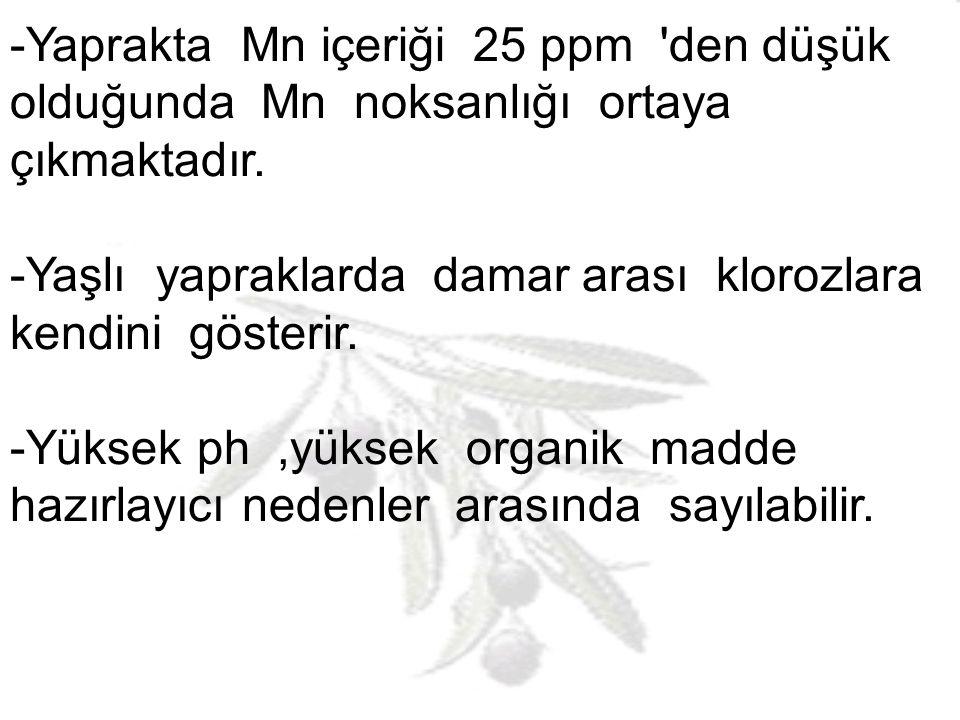 -Yaprakta Mn içeriği 25 ppm den düşük olduğunda Mn noksanlığı ortaya çıkmaktadır.
