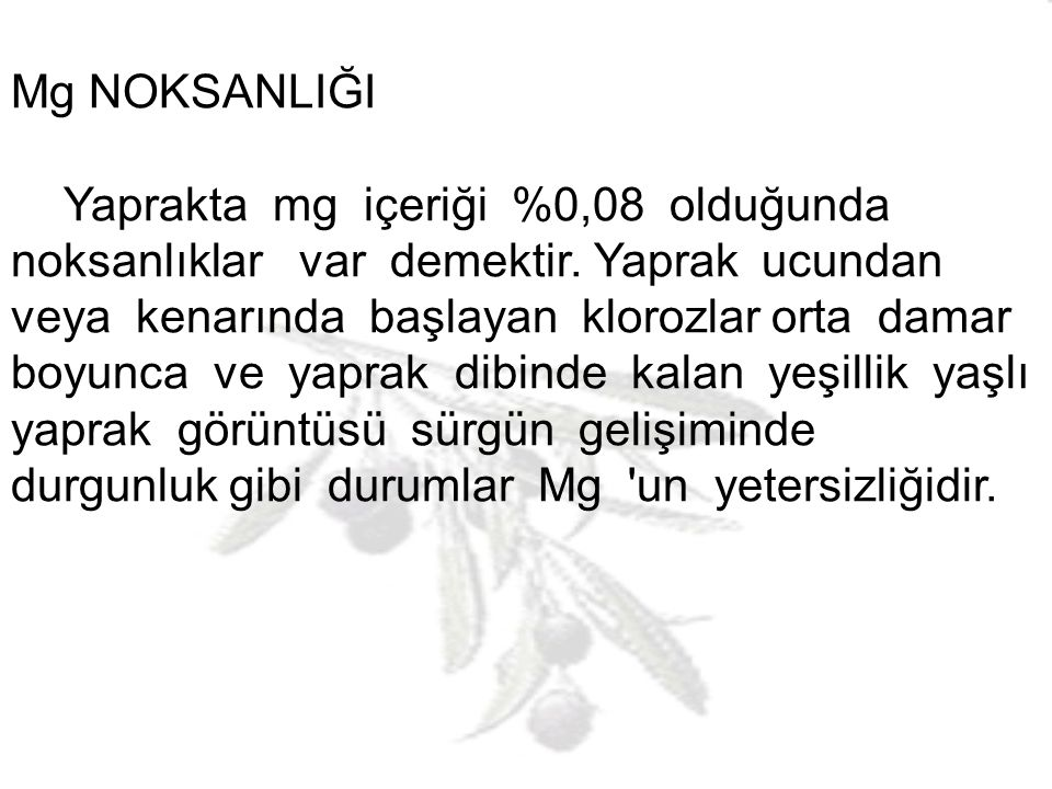 Mg NOKSANLIĞI