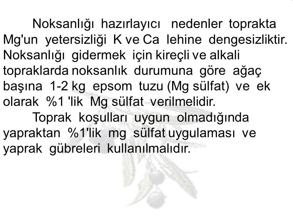 Noksanlığı hazırlayıcı nedenler toprakta Mg un yetersizliği K ve Ca lehine dengesizliktir. Noksanlığı gidermek için kireçli ve alkali topraklarda noksanlık durumuna göre ağaç başına 1-2 kg epsom tuzu (Mg sülfat) ve ek olarak %1 lik Mg sülfat verilmelidir.