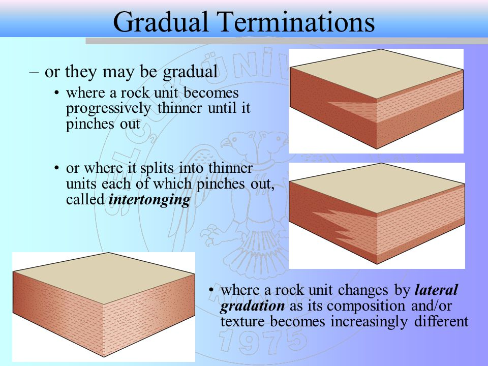 Gradual Terminations or they may be gradual