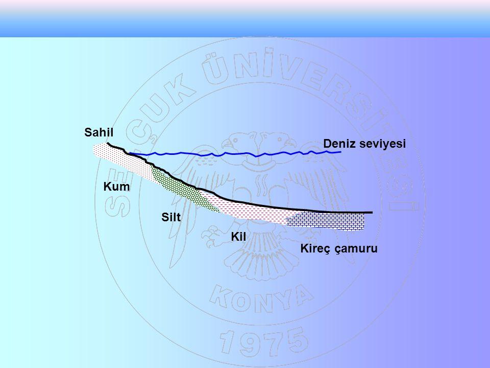 Sahil Deniz seviyesi Kum Silt Kil Kireç çamuru