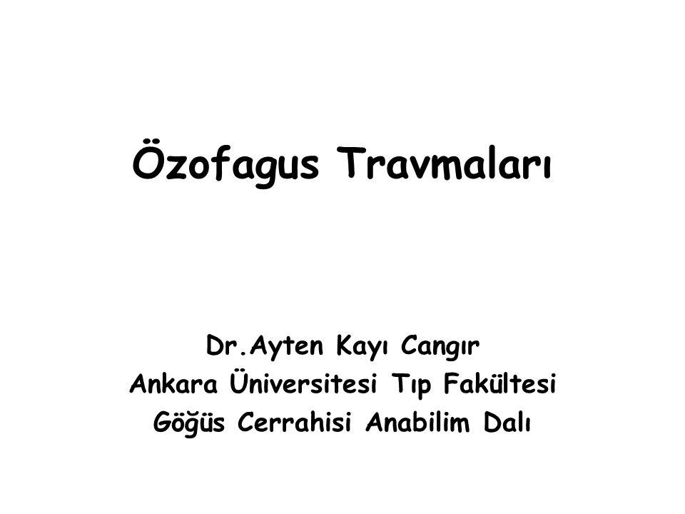 Ankara Üniversitesi Tıp Fakültesi Göğüs Cerrahisi Anabilim Dalı