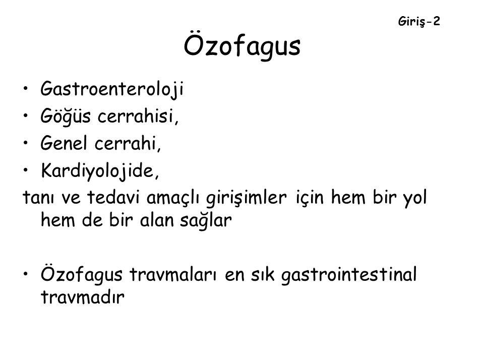 Özofagus Gastroenteroloji Göğüs cerrahisi, Genel cerrahi,