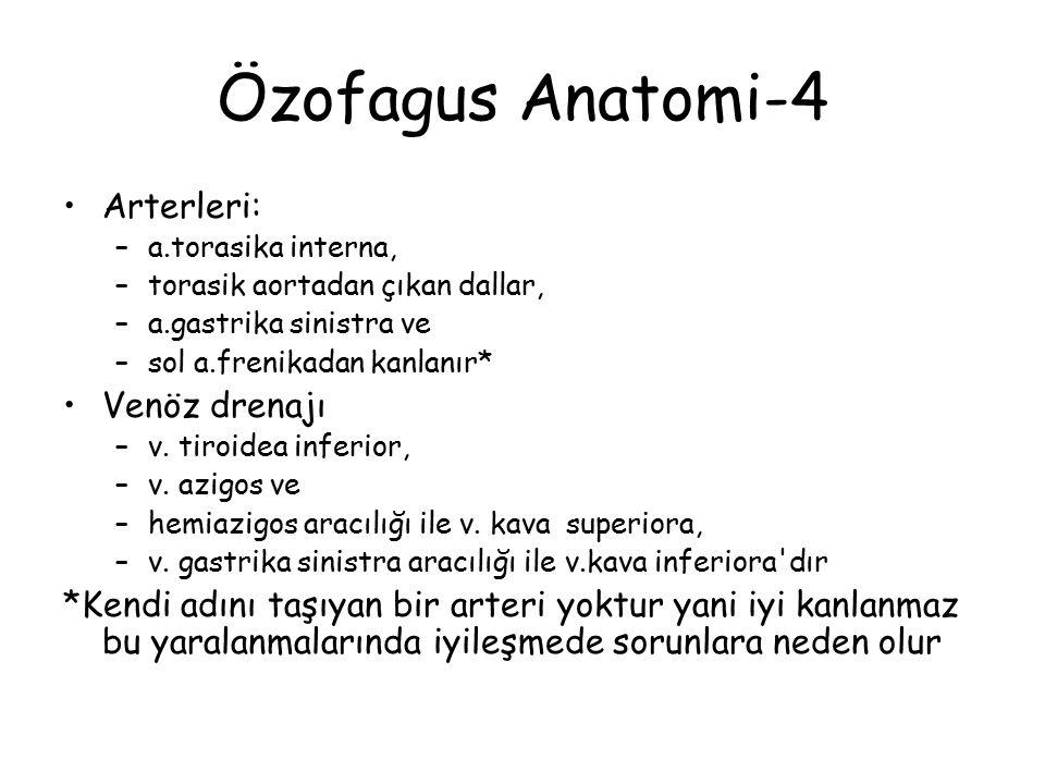 Özofagus Anatomi-4 Arterleri: Venöz drenajı