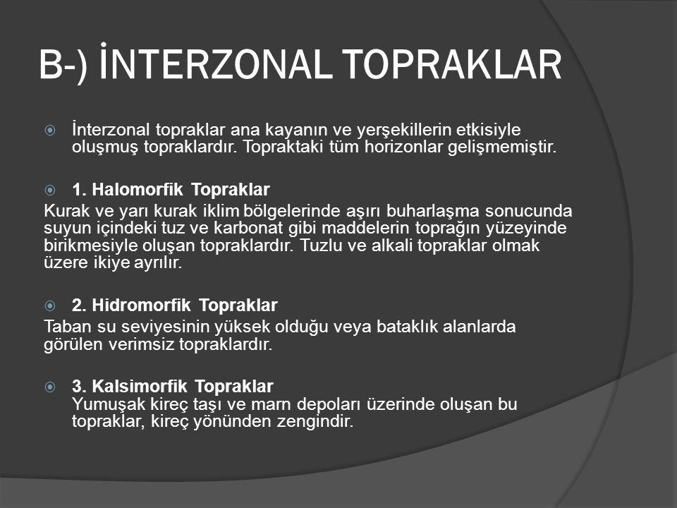 B-) İNTERZONAL TOPRAKLAR
