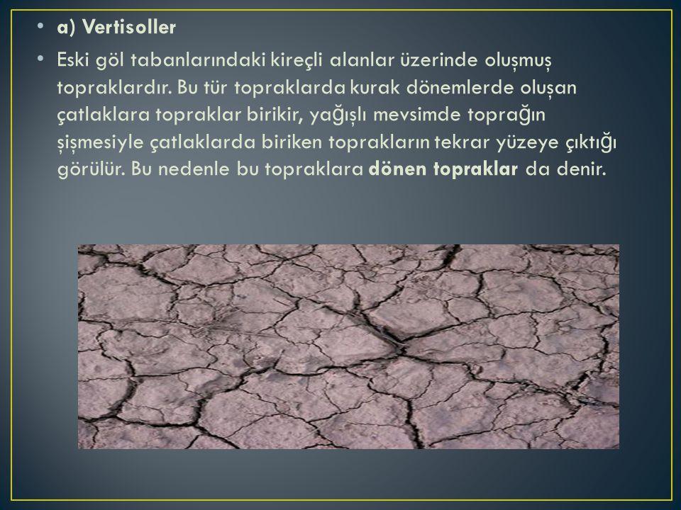 a) Vertisoller