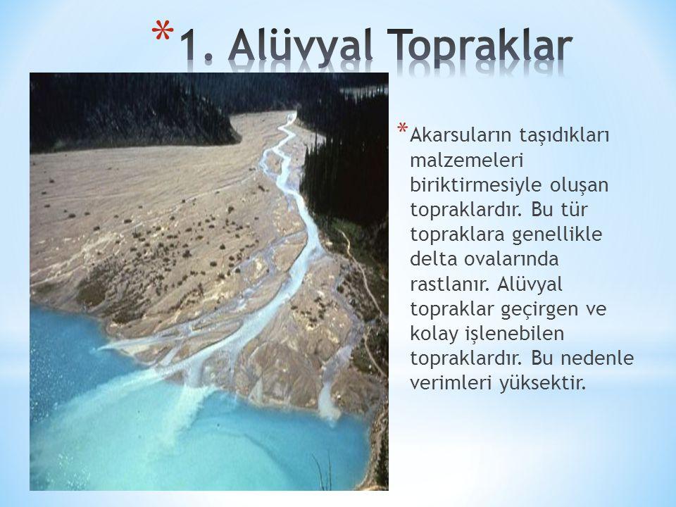 1. Alüvyal Topraklar