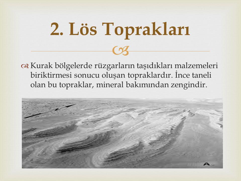 2. Lös Toprakları