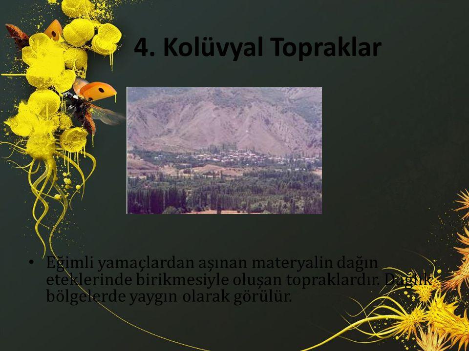 4. Kolüvyal Topraklar