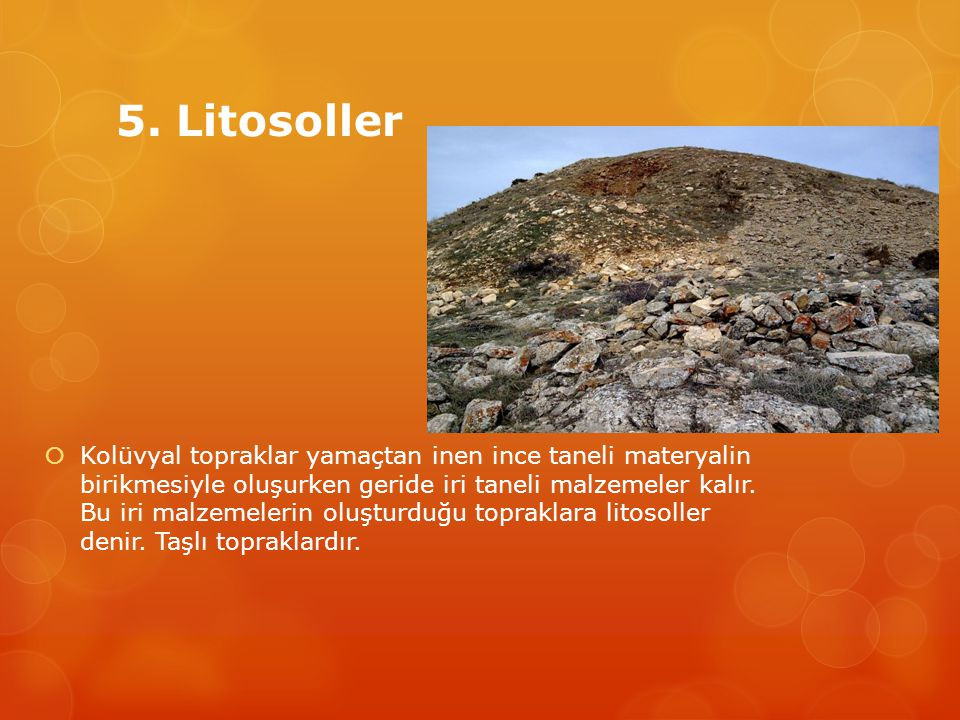 5. Litosoller