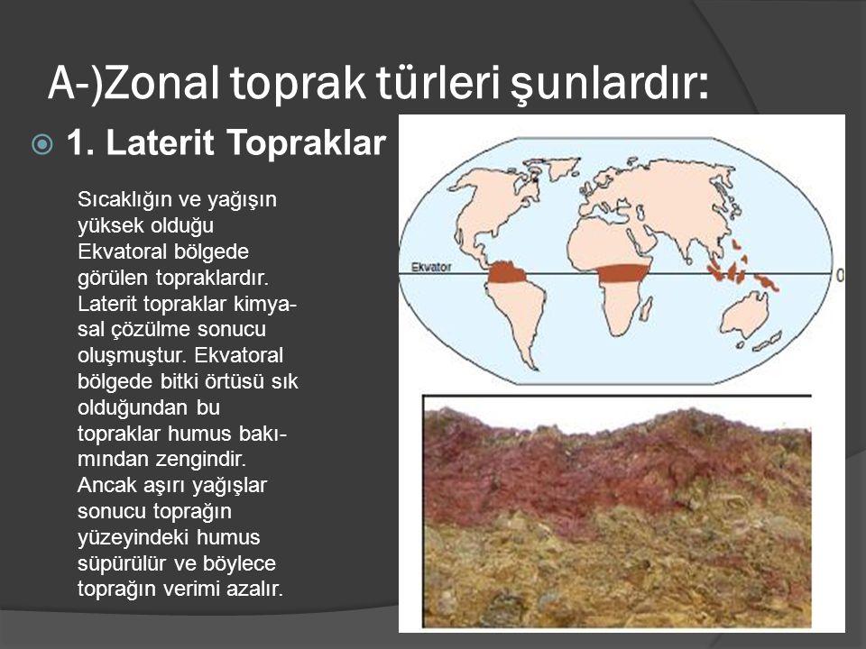 A-)Zonal toprak türleri şunlardır: