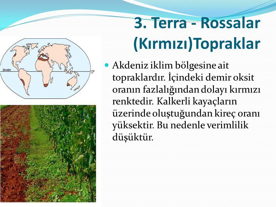 3. Terra - Rossalar (Kırmızı)Topraklar