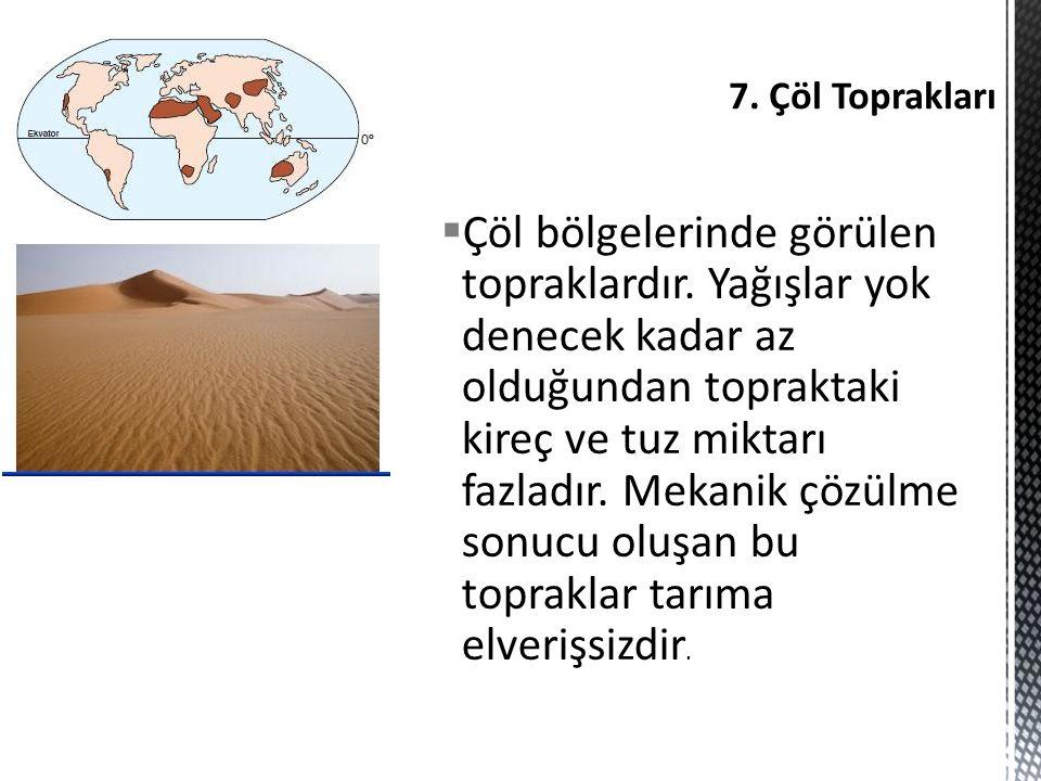 7. Çöl Toprakları