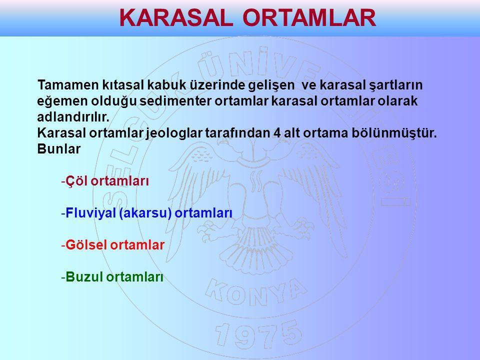 KARASAL ORTAMLAR