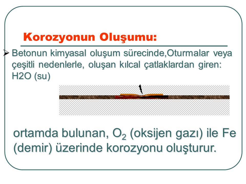 ortamda bulunan, O2 (oksijen gazı) ile Fe