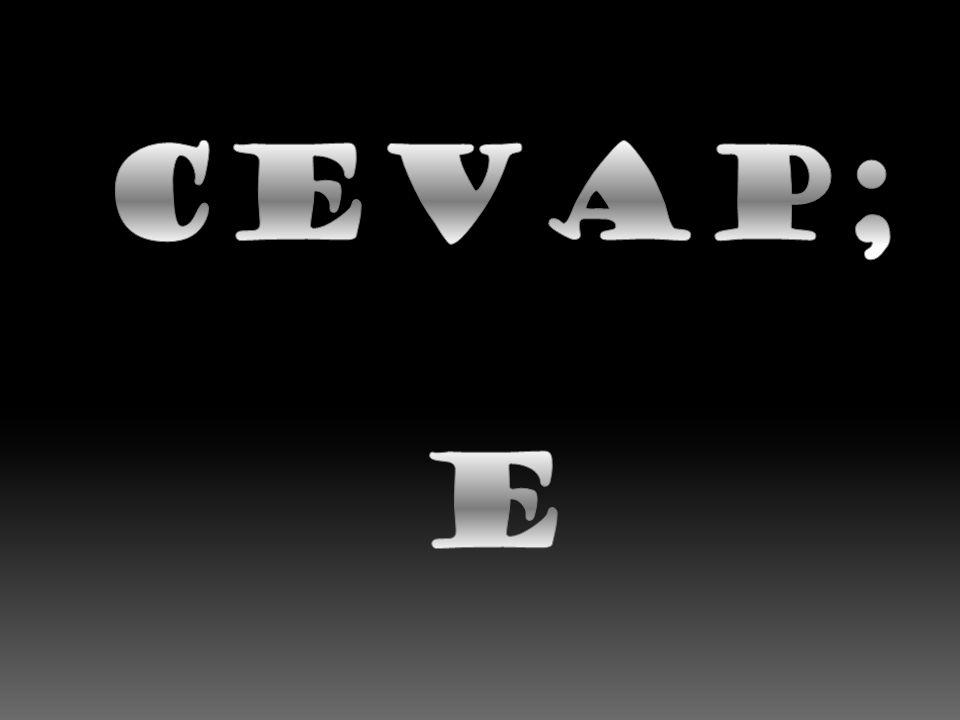 CEVAP; E