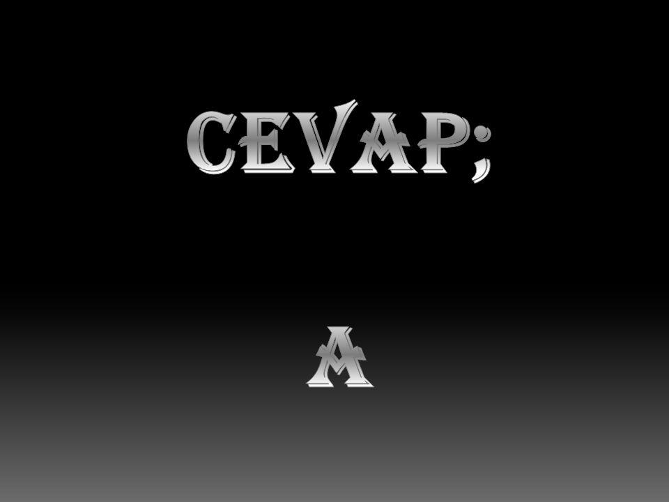 CEVAP; A