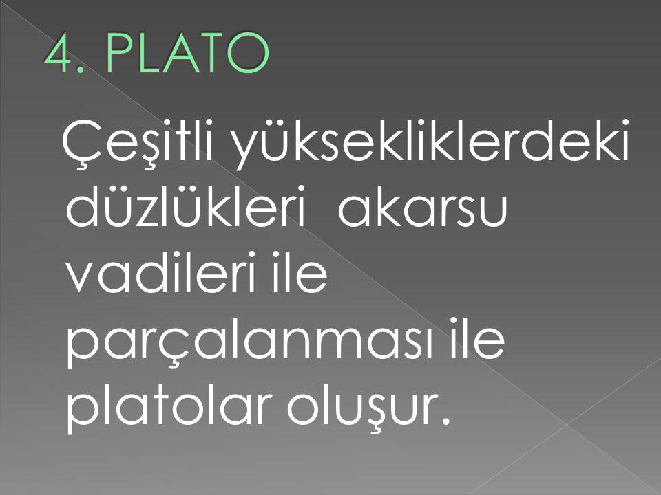 4. PLATO Çeşitli yüksekliklerdeki düzlükleri akarsu vadileri ile parçalanması ile platolar oluşur.