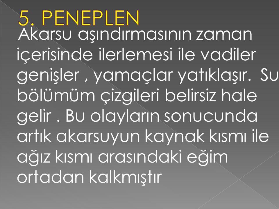 5. PENEPLEN
