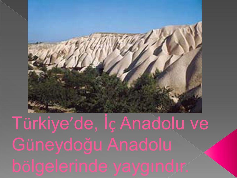 Türkiye'de, İç Anadolu ve Güneydoğu Anadolu bölgelerinde yaygındır.