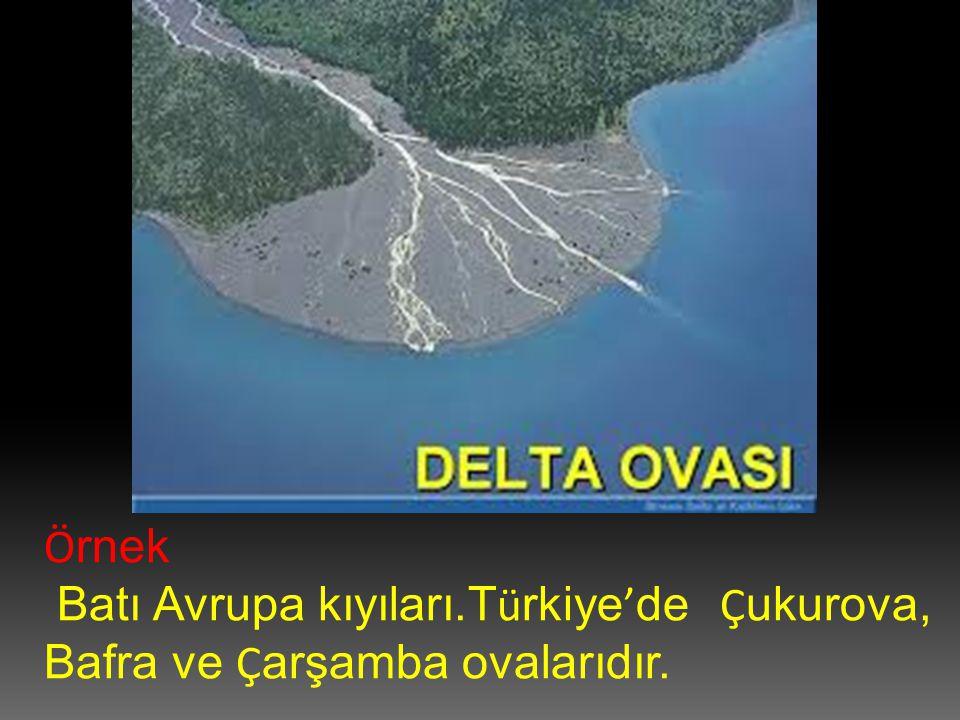 Örnek Batı Avrupa kıyıları.Türkiye'de Çukurova, Bafra ve Çarşamba ovalarıdır.