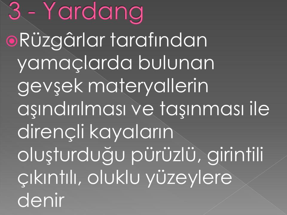 3 - Yardang