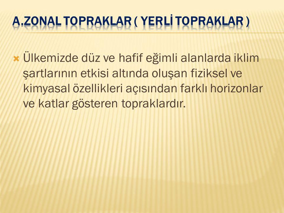 A.ZONAL TOPRAKLAR ( YERLİ TOPRAKLAR )