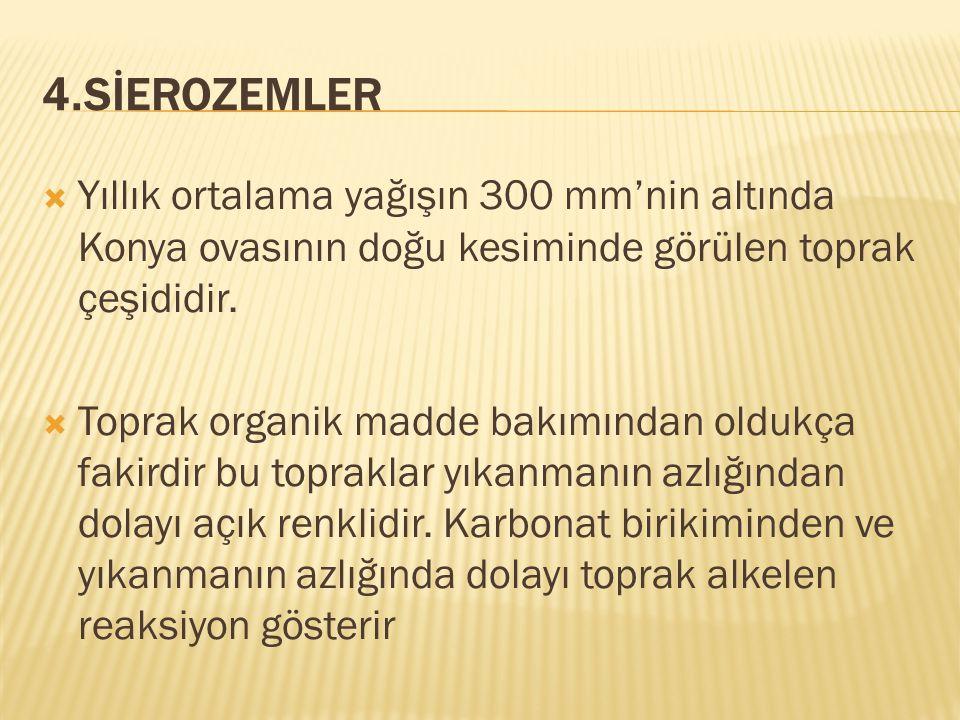 4.SİEROZEMLER Yıllık ortalama yağışın 300 mm'nin altında Konya ovasının doğu kesiminde görülen toprak çeşididir.
