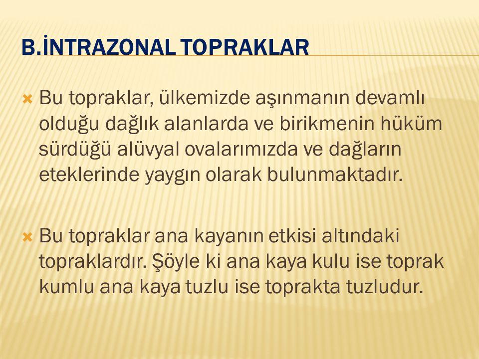 b.İNTRAZONAL TOPRAKLAR