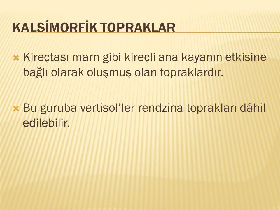 KALSİMORFİK TOPRAKLAR