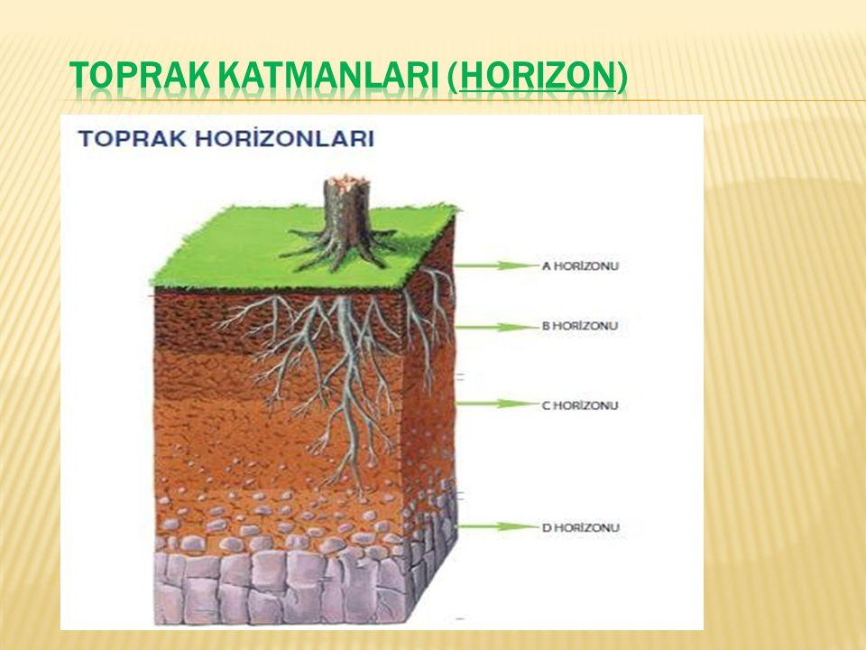 TOPRAK KATMANLARI (HORIZON)
