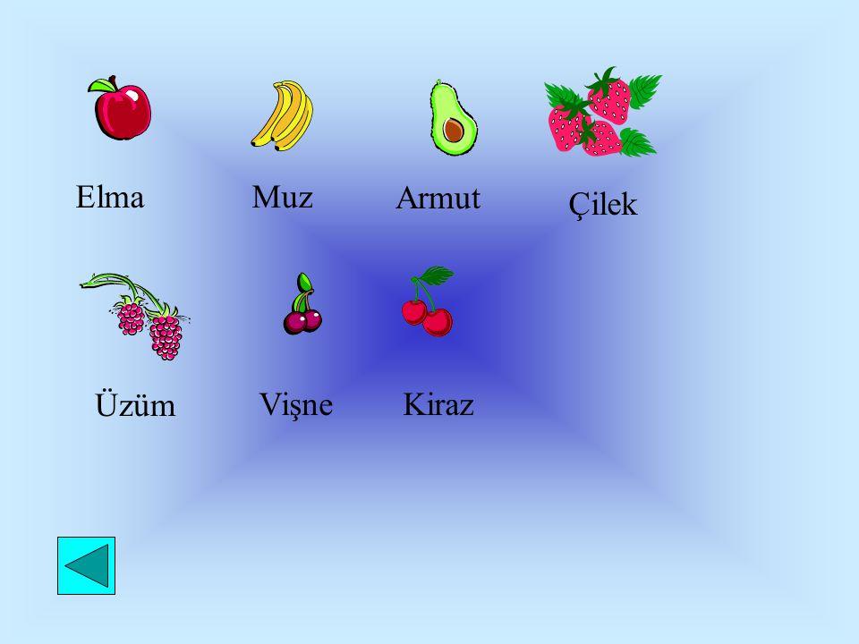 Elma Muz Armut Çilek Üzüm Vişne Kiraz