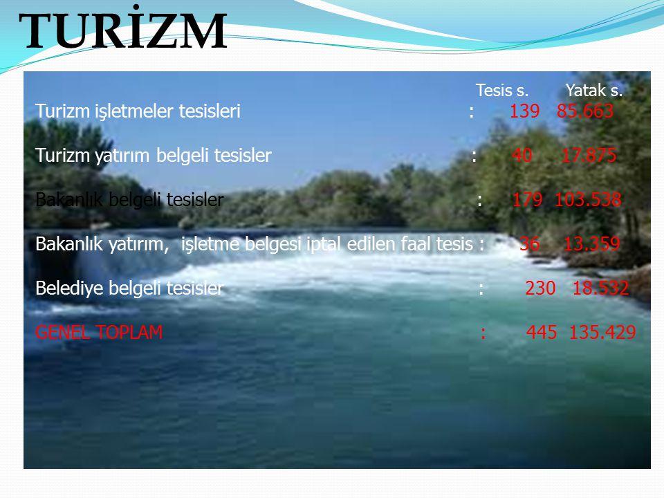TURİZM Turizm işletmeler tesisleri : 139 85.663